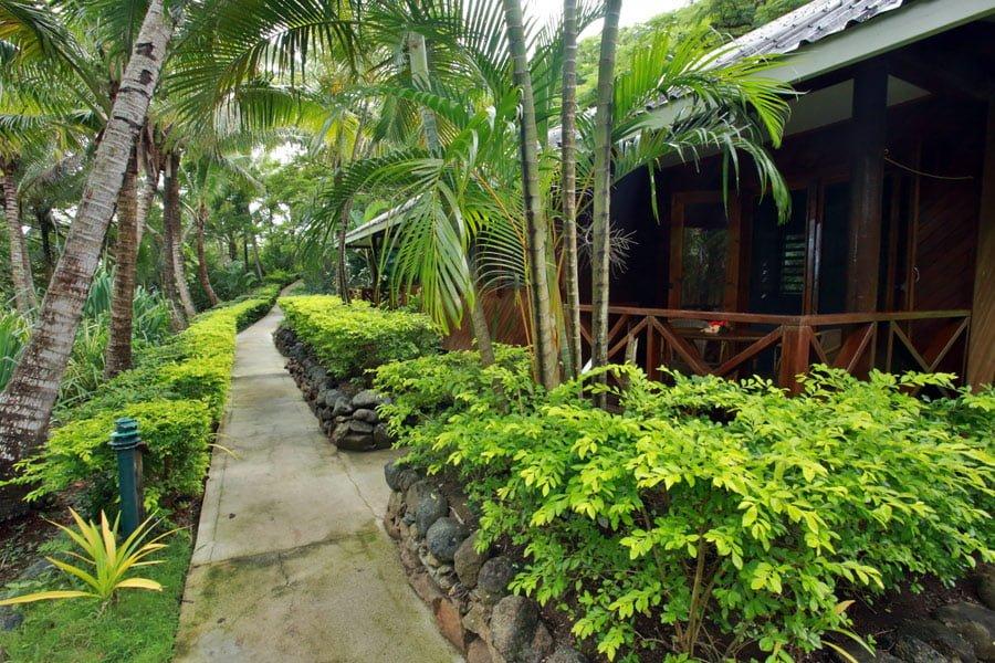 Garden View Bure