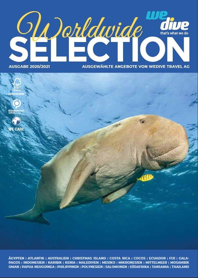 Wedive Katalog Dugong